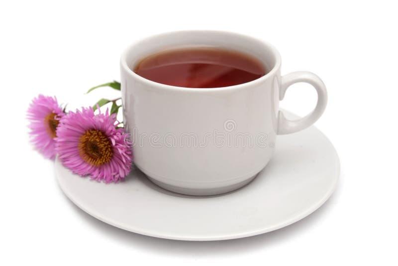 Tasse Tee und rosafarbene Gänseblümchen. lizenzfreie stockbilder
