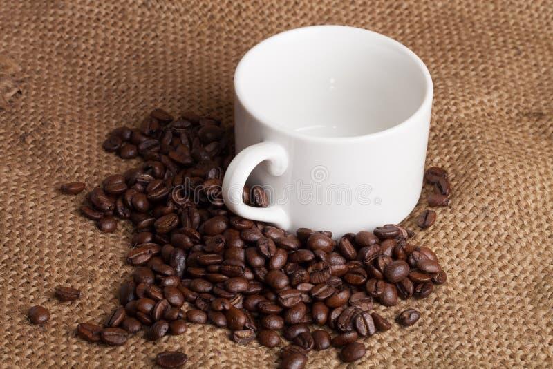 Tasse vide et grains de café rôtis sur la toile à sac photo stock
