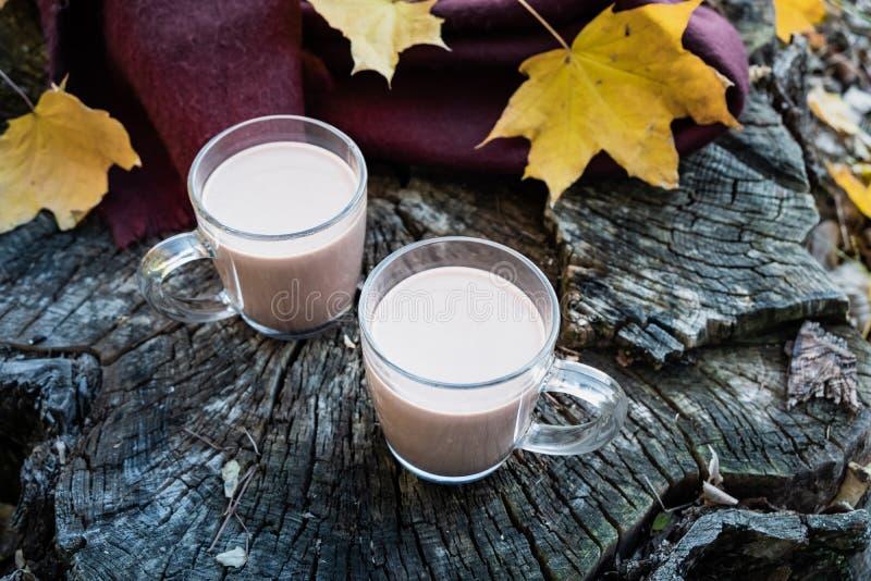 Tasses de cacao sur le fond en bois naturel avec des feuilles d'automne mil photos stock