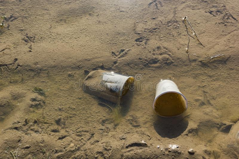 Tasses en plastique vidées en eaux peu profondes photographie stock