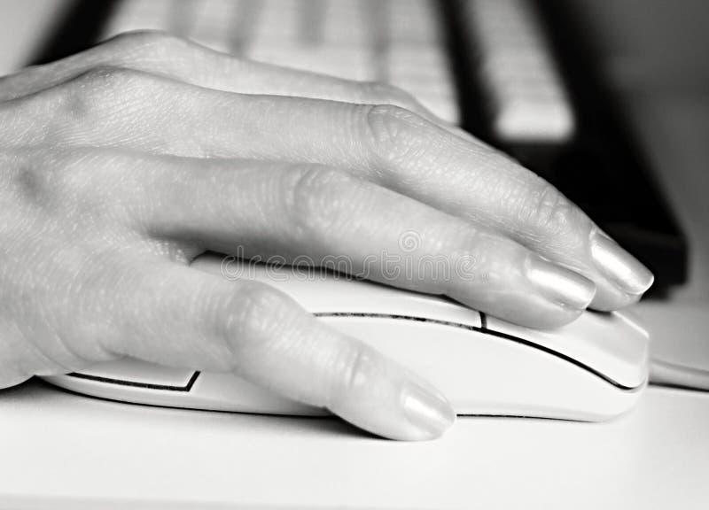 Tastatur und Maus lizenzfreie stockfotografie