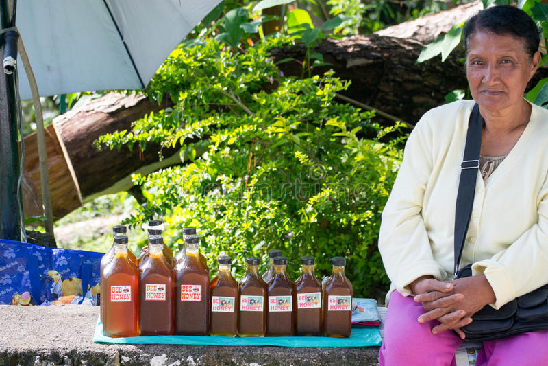 Taste of Honey stock photography