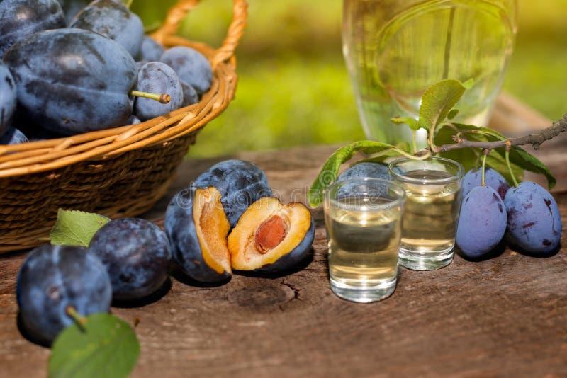 Taste our rakia. Plum brandy slivovitsa with cut open plums on the table royalty free stock photography