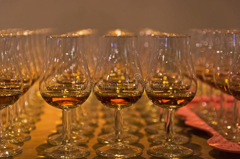Glasses with cognac on tasting royalty free stock photo