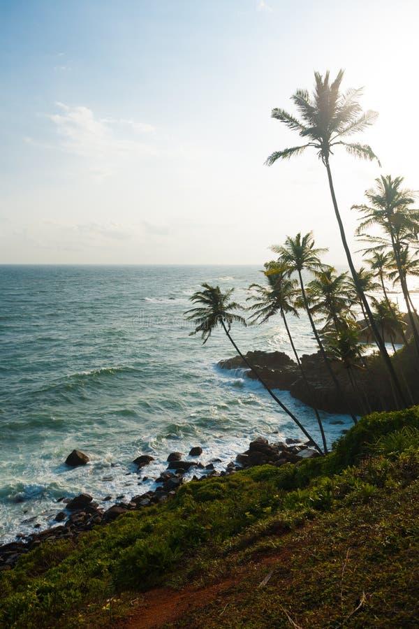 Tasto del litorale di Mirissa Sri Lanka del Headland alto fotografie stock libere da diritti