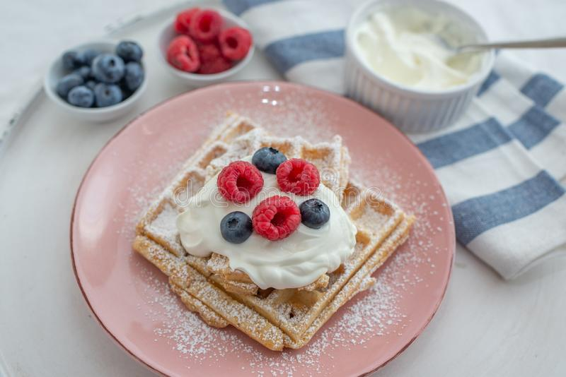 Tasty Belgian waffles with clotted cream and berries on plate royalty free stock images