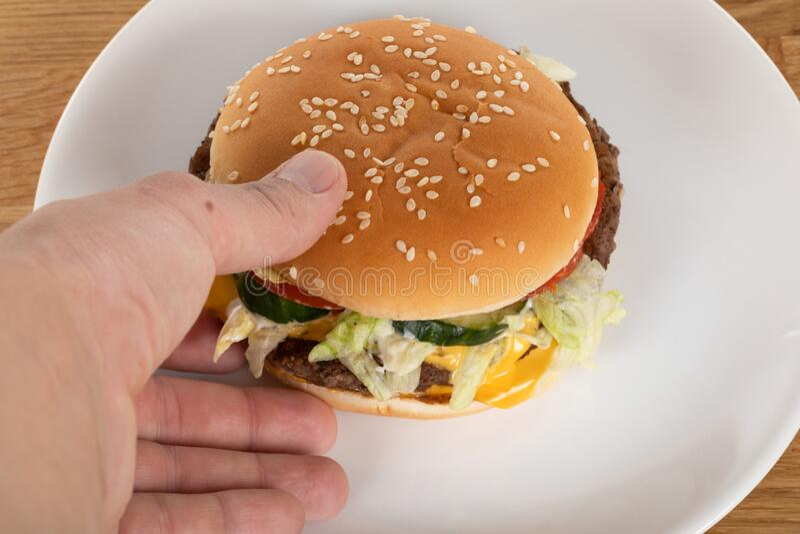 Tasty cheeseburger royaltyfria bilder