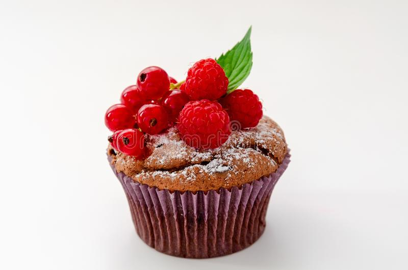 Tasty chocolate cupcake with berries, isolated on white stock photography