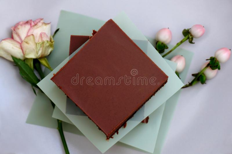 Tasty chocolate homemade non gluten cake piece on the plate royalty free stock photo