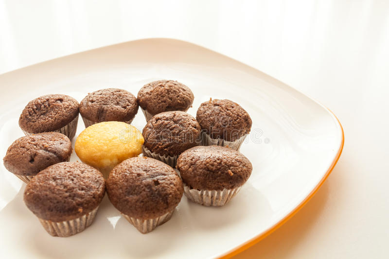 Tasty chocolate muffins with one cake muffin in center. Tasty muffins with one cake muffin in center in the plate on the table near to window with natural sun royalty free stock photo