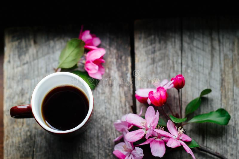 Tasty coffee in a cup and a sprig of pink flowers on a wooden table stock image