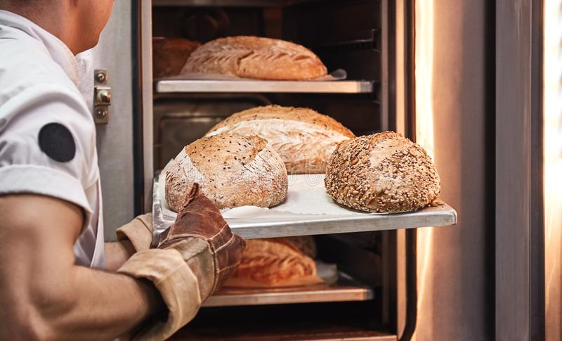 Tasty and fresh. Baker`s hands in working gloves taking out freshly baked bread from the oven at the kitchen royalty free stock photos