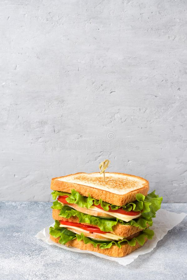 Tasty and fresh sandwiches on a light grey table. Copy space royalty free stock photography