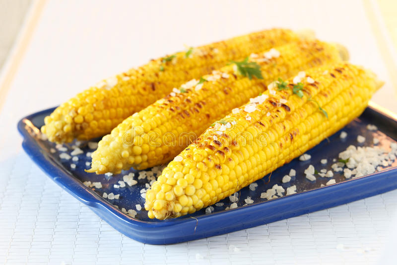 Tasty grilled corn royalty free stock photo