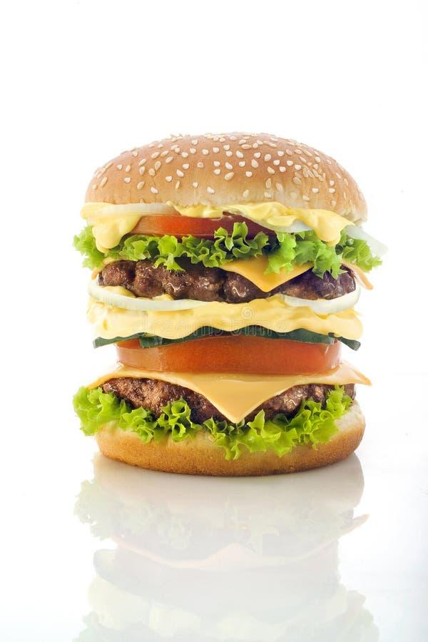 Tasty Hamburger royalty free stock image