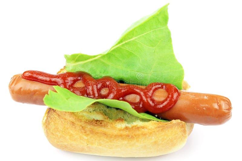 Download Tasty hot dog stock image. Image of fast, picnic, frankfurter - 31465653