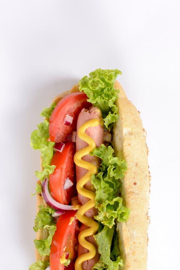 Tasty hot dog royalty free stock photography