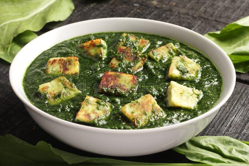 Tasty Indian dish -palak paneer, royalty free stock photos