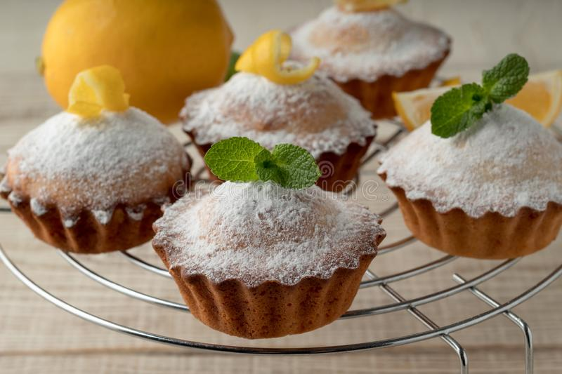 Tasty lemon muffins with sugar powder on cooling rack royalty free stock photography