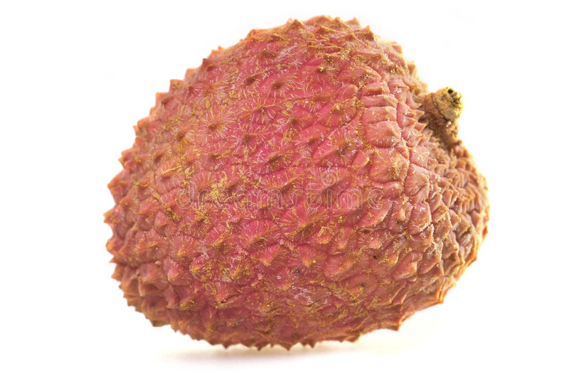 Download Tasty litchi stock photo. Image of litschi, fresh, pink - 415520
