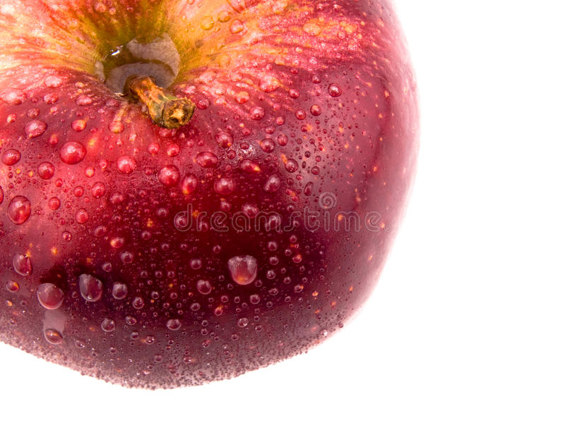 Tasty red apple. Closeup picture of tasty red apple on white background royalty free stock image
