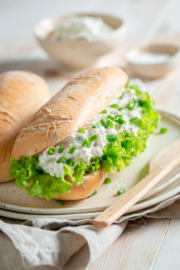Tasty sandwich with crunchy bread, chive and fromage cheese. On wooden table stock images