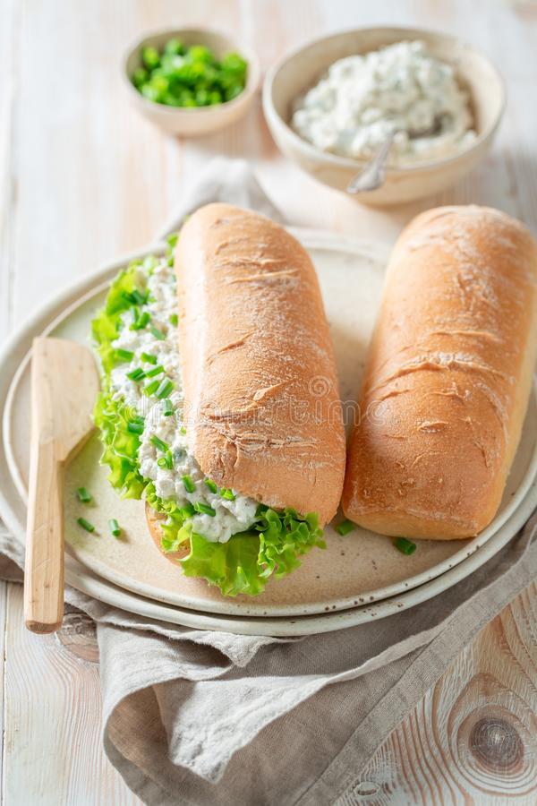 Tasty sandwich with fromage cheese, crunchy bread and lettuce. On wooden table stock photos