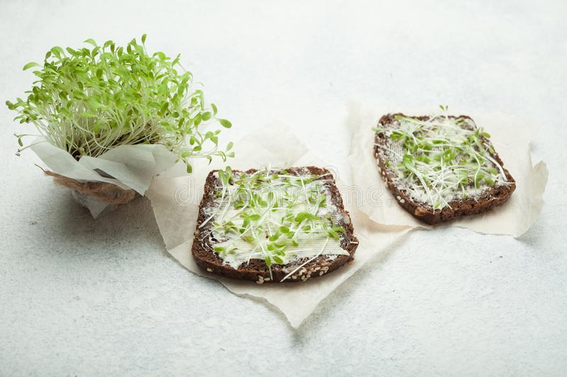 Tasty snacks with cream cheese and vegetable micro greens. Healthy vegetarian sandwiches royalty free stock image