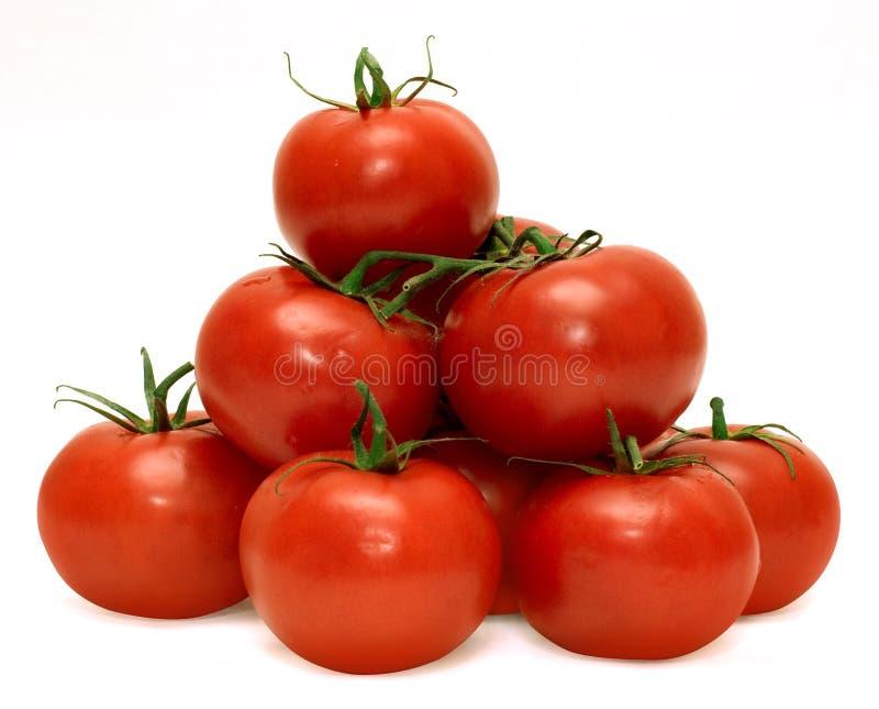 Tasty tomatos stock image