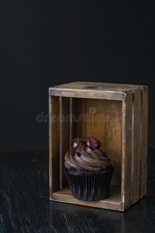 A tasty treat: frosted cupcake with cherries on the top royalty free stock photos
