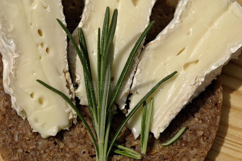 Delicious Camenbert cheese and black bread. Tasty and typical combination, great Camenbert cheese from France and Full grain bread royalty free stock images