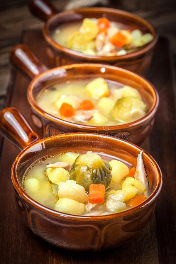 Tasty vegetable soup. royalty free stock photos