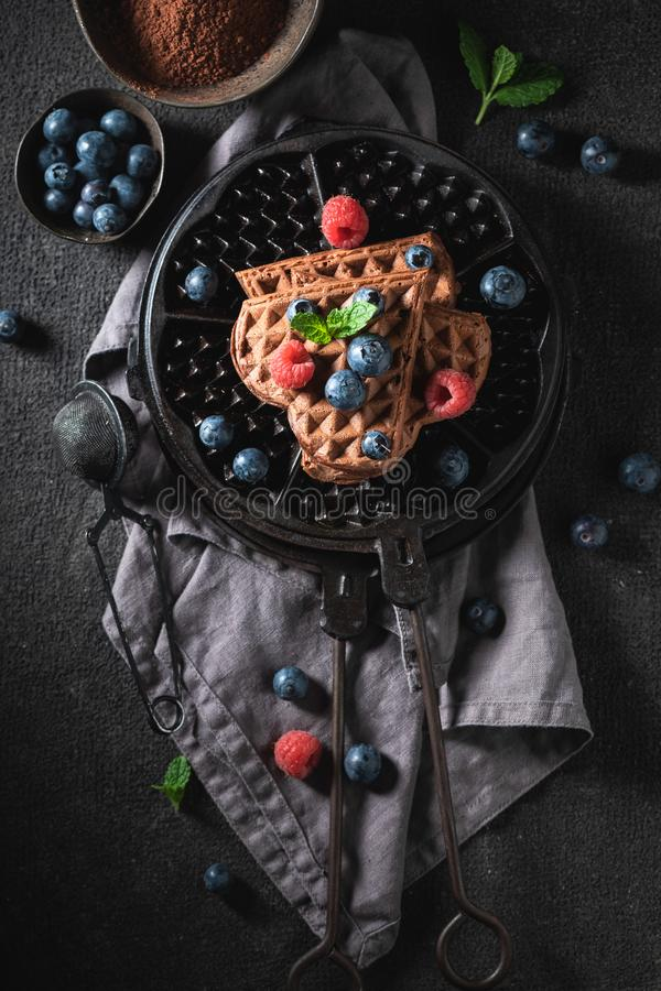 Tasty waffles made of cocoa with fresh blueberries. On dark table royalty free stock images