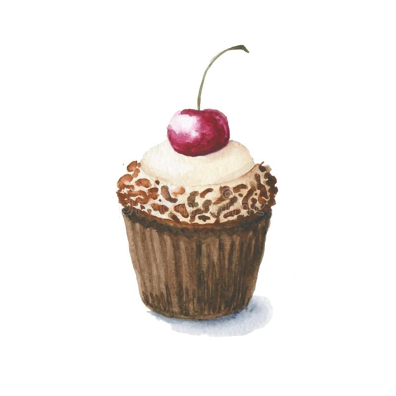 A tasty  watercolor drawn muffin with chocolate chips and ripe cherry at the top. In brown wrapper vector illustration