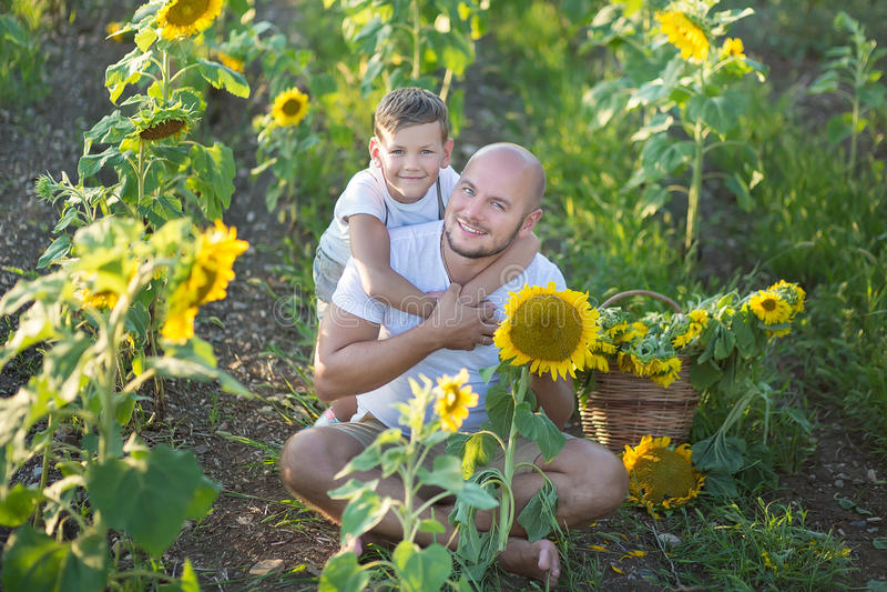 Tata z syna przytuleniem w polu słoneczniki Syna uścisk jego ojciec w polu słoneczniki zdjęcie royalty free