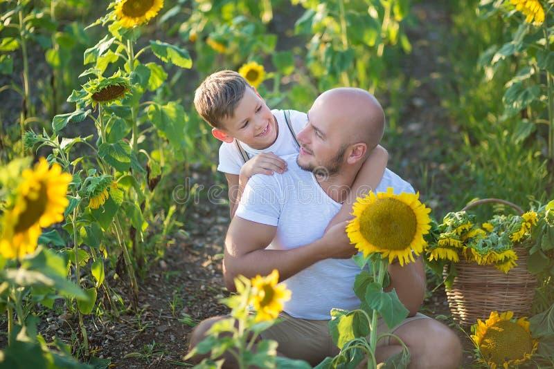 Tata z syna przytuleniem w polu słoneczniki Syna uścisk jego ojciec w polu słoneczniki obrazy royalty free