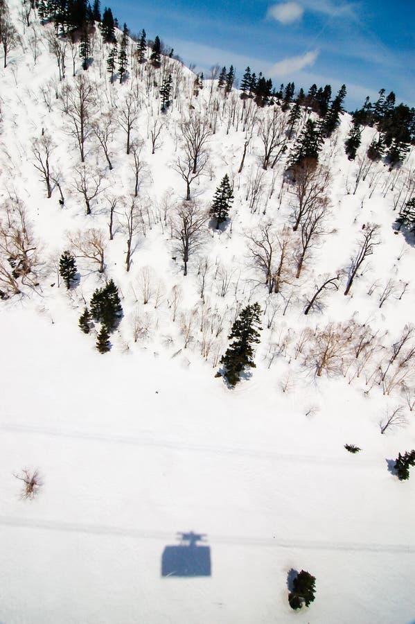 Tateyama Ropeway& x27; s-skugga, snöig backe, trädspridning arkivfoton