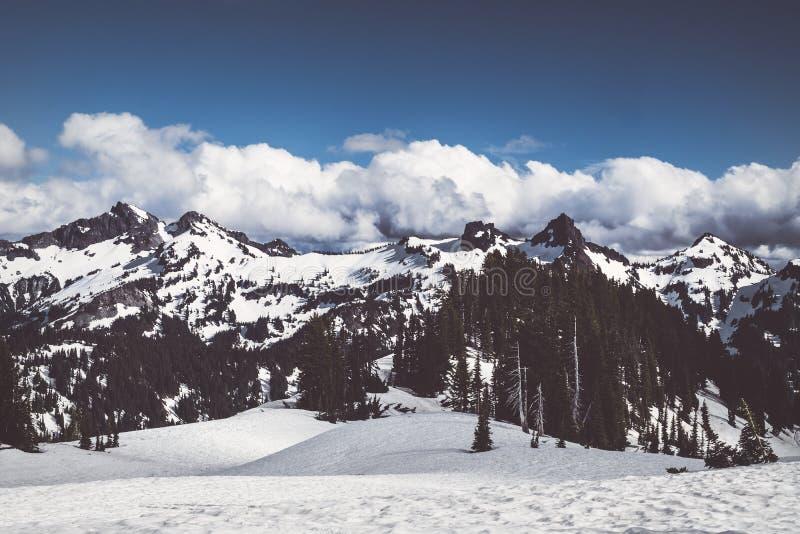 Tatoosh bergskedja i monteringen Rainier National Park fotografering för bildbyråer