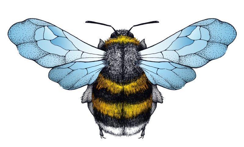 Tatouage d'abeille de miel Tatouage de Dotwork Symbole de diligence illustration de vecteur