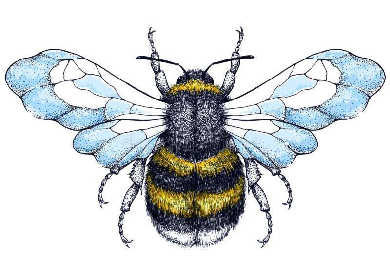 Tatouage d'abeille de miel Tatouage de Dotwork Symbole de diligence illustration libre de droits