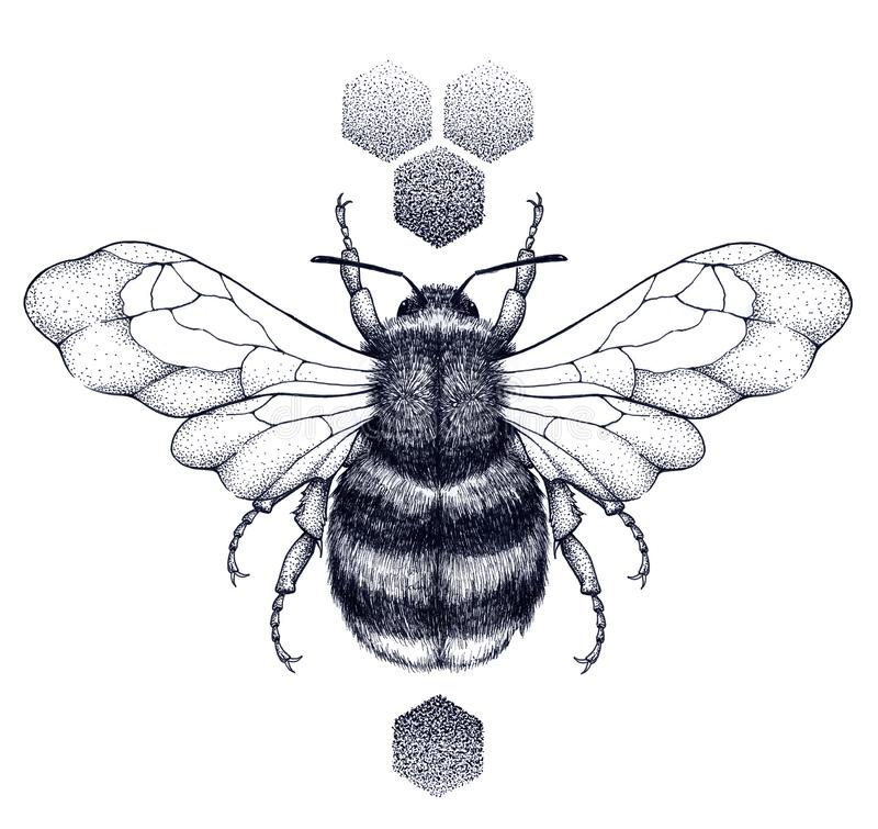 Tatouage d'abeille et de nid d'abeilles de miel Tatouage de Dotwork illustration stock