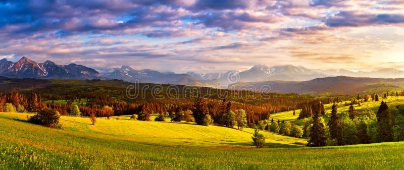 Tatra山全景 美丽的谷和多云天空 库存照片
