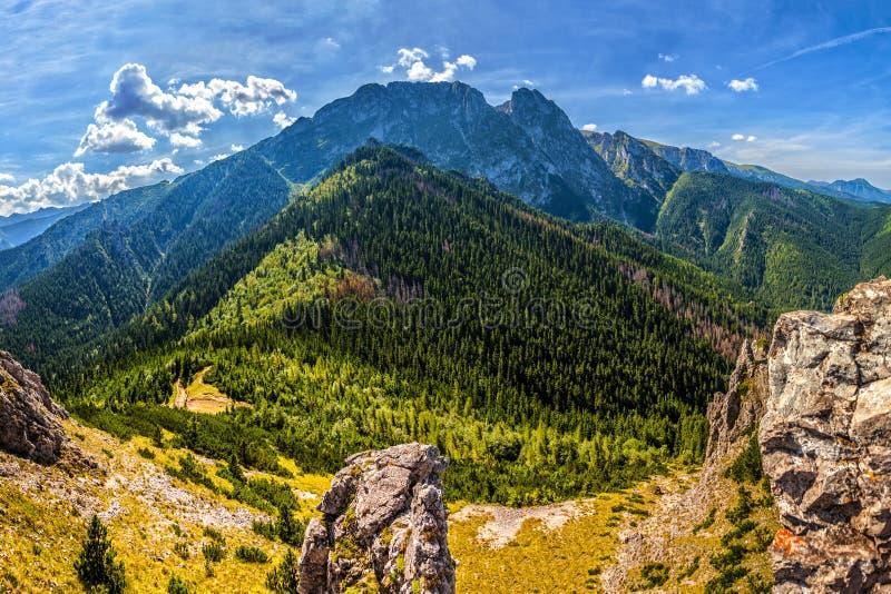 Tatra山在波兰 库存照片