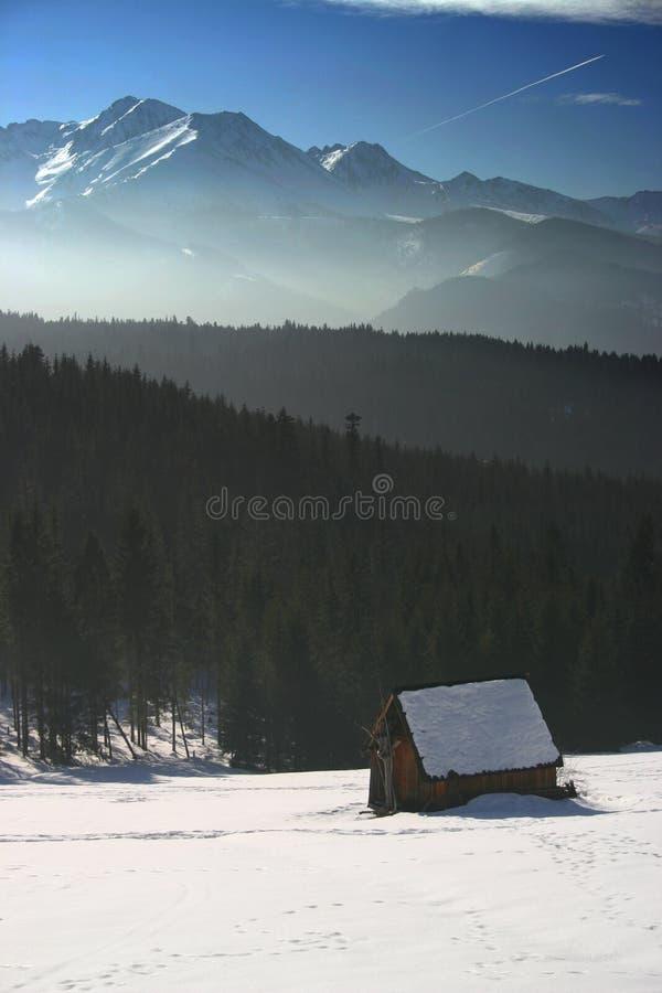 Download Tatra imagem de stock. Imagem de neve, floresta, montagem - 529515
