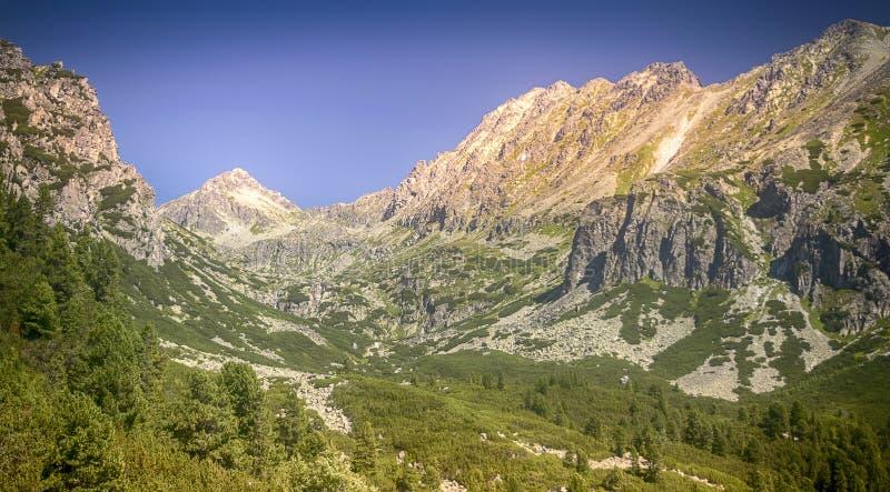 Tatra berg i Slovakien arkivbild