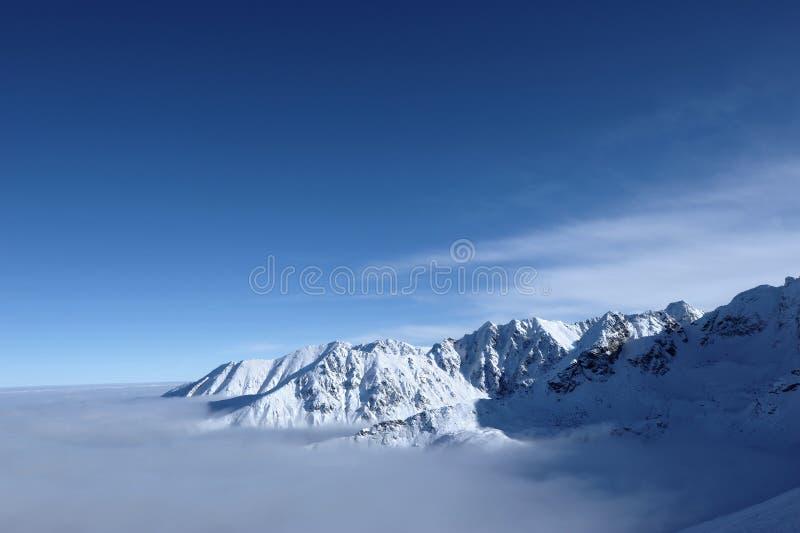 Tatra Gebirgswinterlandschaft lizenzfreies stockbild