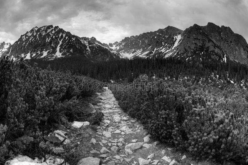Download Tatra mountains stock photo. Image of peaks, mountain - 25092266