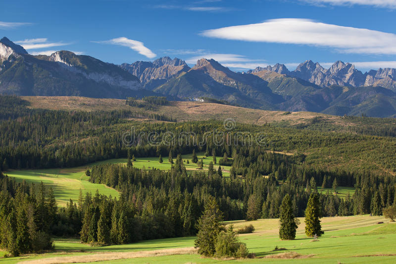 Tatra mountains. Green meadow under the peaks of Tatra mountains stock photography