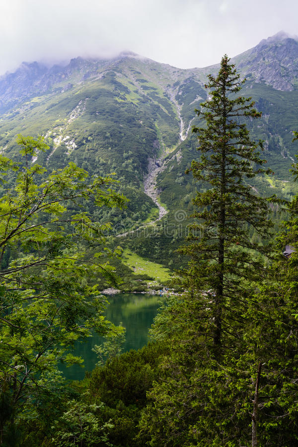 Download Tatra mountains stock photo. Image of poland, mountains - 48041900