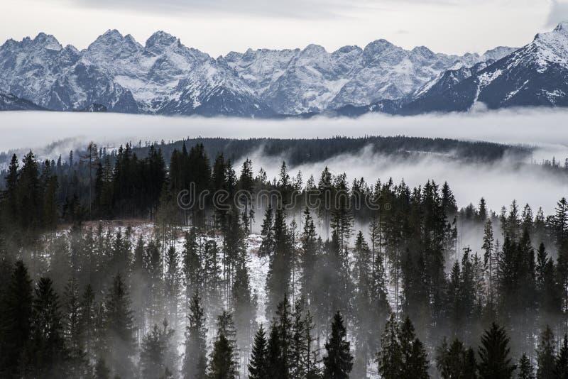 Tatra mountains in winter, landscape stock photo